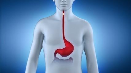 Stomach pill healing