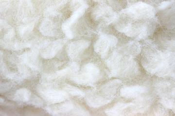 Fur texture detail