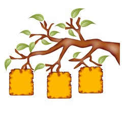 avviso albero
