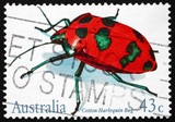 Postage stamp Australia 1991 Cotton Harlequin Bug
