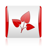 eco red and white square web glossy icon