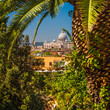 Distant View of Basilica Sant Pietro in Vatican through palms