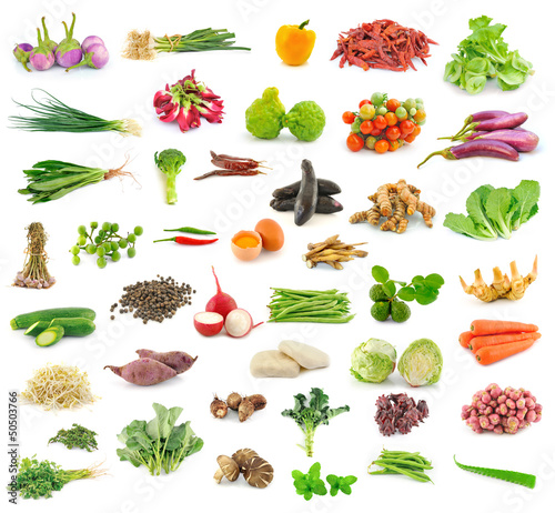 Vegetable and herb collection  on white background