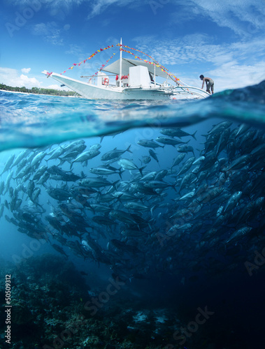 Leinwanddruck Bild Fish