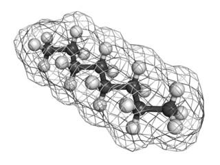 Octane hydrocarbon, molecular model.