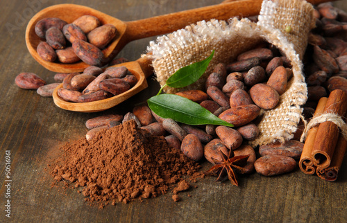 Fotobehang Kruiden 2 Cocoa beans in spoons, cocoa powder and spices