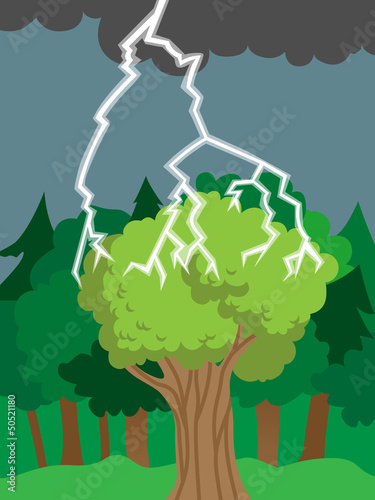 Thunder bolt or lightning hits tree or forest