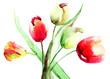 Quadro Spring Tulips flowers