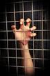 hand behind the lattice