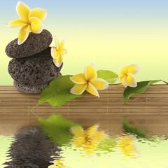 composition nature, détente, bien-être
