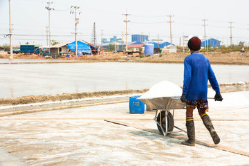 People working in the salt field