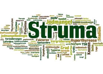 Struma (Kropf/Schilddrüsenvergrößerung)