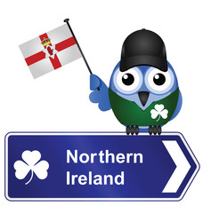 Comical Northern Ireland sign
