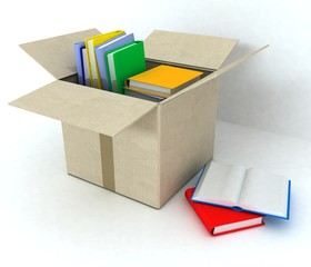 Cardboard box with books on white background.