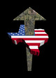American dollars arrow and Texas map flag illustration