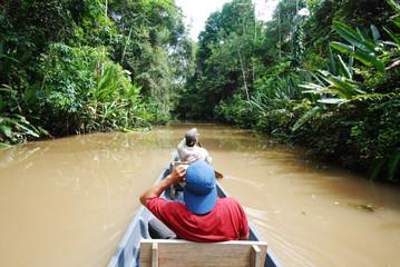 Paddling on black water, Amazon rainforest