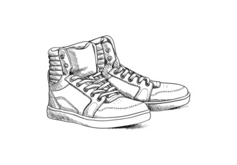 Sketch shoes