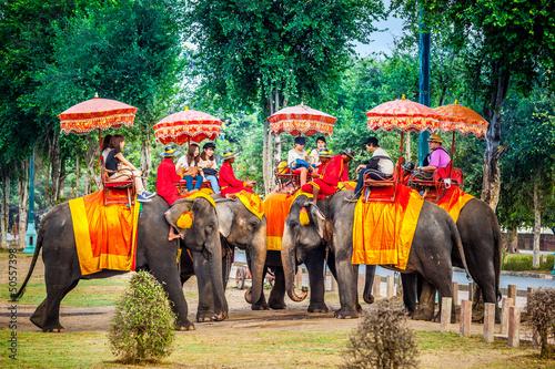 orientalna-wycieczka-na-sloniach