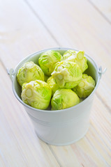 brussel cabbage
