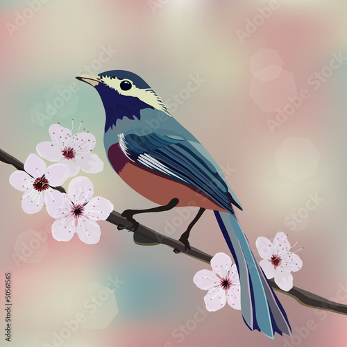 Bird sitting on the branch almond with flower