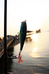 Fishing lure.