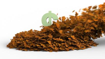 Autumn Leaves Revealing US Dollar