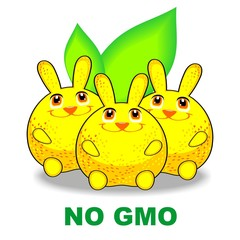 No GMO rabbit -orange
