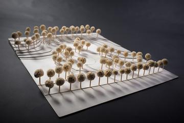 Park scale model