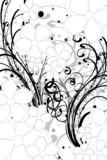 Fototapety tansparence de floral