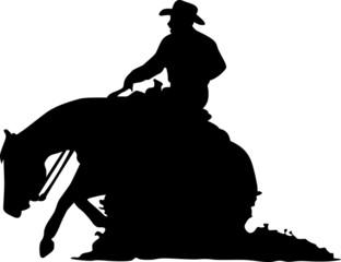 Quarter Horse - Sliding Stop