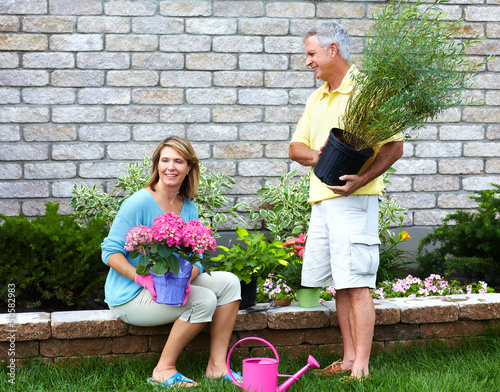 Senior couple gardening.