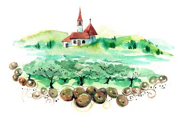 olive-wood