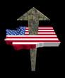 American dollars arrow and Washington map flag illustration