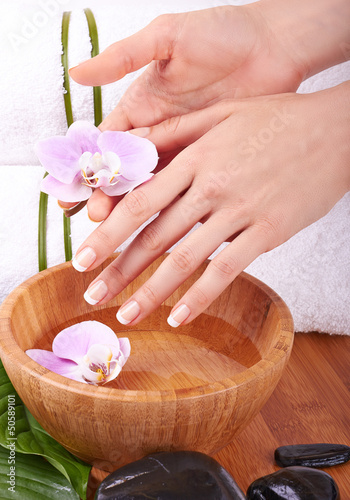 Woman's hands with orhids