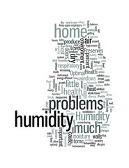 Optimal Humidity Level Preserves Your Home Health