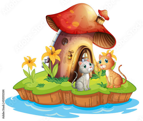 Staande foto Magische wereld A mushroom house with two cats