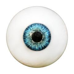 Auge - Augapfel mit Iris und Pupille