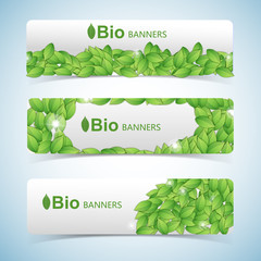 Nature abstract green banners set