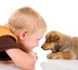 boy with puppy. isolated on white