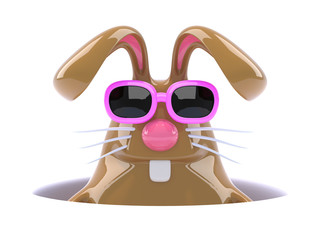 Chocolate bunny down a hole with his sunglasses