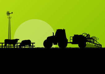 Agriculture tractor and beef cattle in cultivated country fields