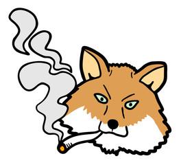 Smoke fox