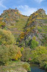 das Ahrtal bei Mayschoss,auf dem Weinberg die Ruine Saffenburg