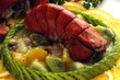 Homarus gammarus Európai homár