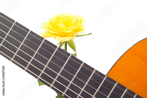 Beautiful yellow rose with guitar