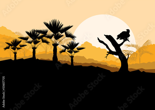 Desert wild nature landscape with cactus, palm tree plants