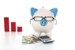 Piggy bank wearing glasses with calculator and cash and red grap