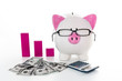Piggy bank wearing glasses with dollars calculator and pink grap