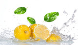 Fototapeta Kitchen - Lemon with water splash isolated on white © Lukas Gojda