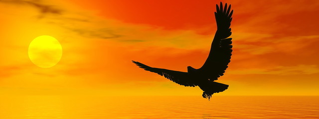Eagle by sunset - 3D render